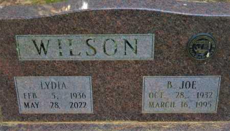WILSON, B JOE - Pulaski County, Arkansas   B JOE WILSON - Arkansas Gravestone Photos