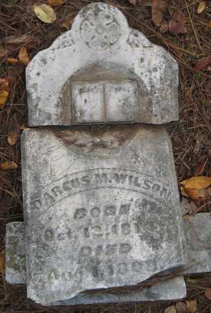 WILSON, DARCUS M - Pulaski County, Arkansas | DARCUS M WILSON - Arkansas Gravestone Photos
