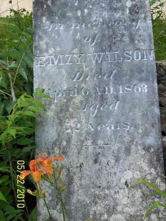 WILSON, EMZY - Pulaski County, Arkansas | EMZY WILSON - Arkansas Gravestone Photos
