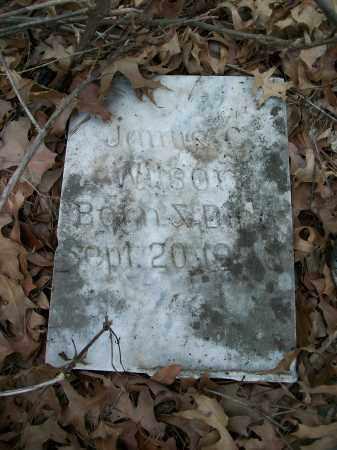 WILSON, JAMES C. - Pulaski County, Arkansas | JAMES C. WILSON - Arkansas Gravestone Photos