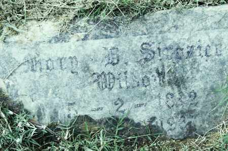 STROZIER WILSON, MARY B - Pulaski County, Arkansas | MARY B STROZIER WILSON - Arkansas Gravestone Photos