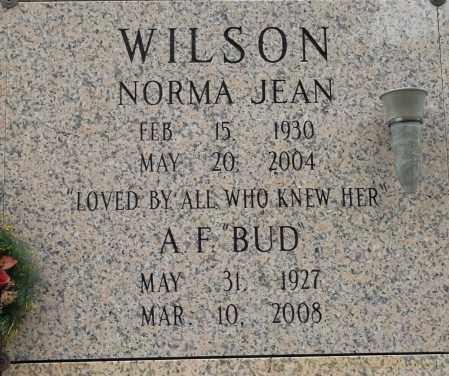 WILSON, NORMA JEAN - Pulaski County, Arkansas | NORMA JEAN WILSON - Arkansas Gravestone Photos