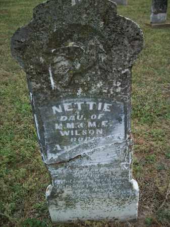 WILSON, NETTIE - Pulaski County, Arkansas | NETTIE WILSON - Arkansas Gravestone Photos