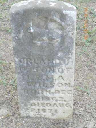WILSON, ORLANDO O - Pulaski County, Arkansas   ORLANDO O WILSON - Arkansas Gravestone Photos