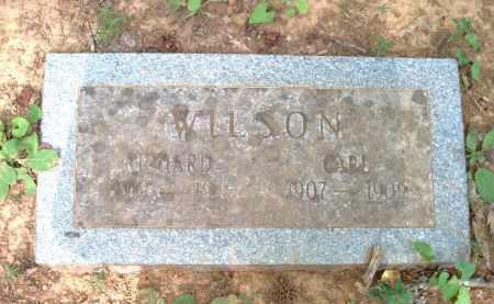 WILSON, RICHARD - Pulaski County, Arkansas | RICHARD WILSON - Arkansas Gravestone Photos