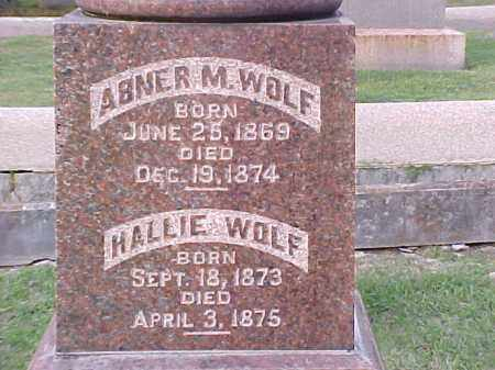 WOLF, ABNER M - Pulaski County, Arkansas | ABNER M WOLF - Arkansas Gravestone Photos