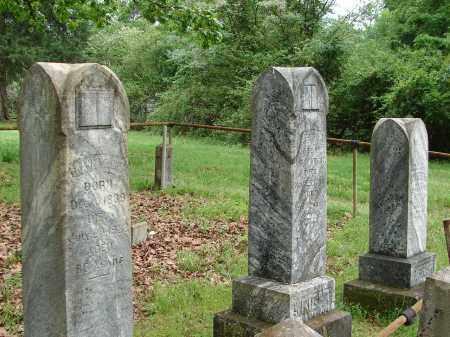 WRIGHT, FAMILY PLOT - Pulaski County, Arkansas | FAMILY PLOT WRIGHT - Arkansas Gravestone Photos