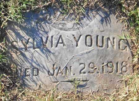 YOUNG, SYLVIA - Pulaski County, Arkansas | SYLVIA YOUNG - Arkansas Gravestone Photos