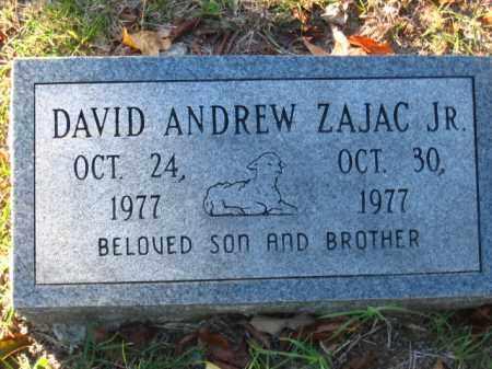 ZAJAC, JR., DAVID ANDREW - Pulaski County, Arkansas | DAVID ANDREW ZAJAC, JR. - Arkansas Gravestone Photos