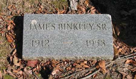 BINKLEY, SR., JAMES - Randolph County, Arkansas | JAMES BINKLEY, SR. - Arkansas Gravestone Photos