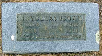 BROWN, JOYCE LEE - Randolph County, Arkansas | JOYCE LEE BROWN - Arkansas Gravestone Photos