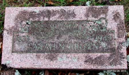 STOUT BROWN, SARAH N - Randolph County, Arkansas | SARAH N STOUT BROWN - Arkansas Gravestone Photos