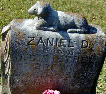 BROWN, ZANIEL D - Randolph County, Arkansas | ZANIEL D BROWN - Arkansas Gravestone Photos