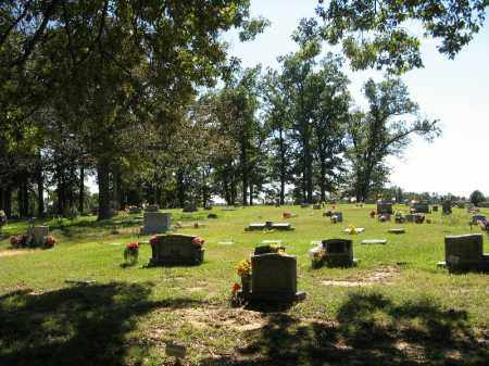 *OVERVIEW,  - Randolph County, Arkansas |  *OVERVIEW - Arkansas Gravestone Photos