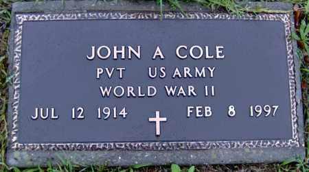 COLE (VETERAN WWII), JOHN ALLEN - Randolph County, Arkansas | JOHN ALLEN COLE (VETERAN WWII) - Arkansas Gravestone Photos