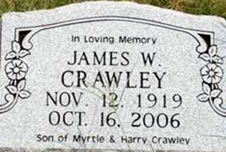 CRAWLEY, JAMES W - Randolph County, Arkansas | JAMES W CRAWLEY - Arkansas Gravestone Photos
