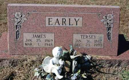 EARLY, JAMES - Randolph County, Arkansas | JAMES EARLY - Arkansas Gravestone Photos