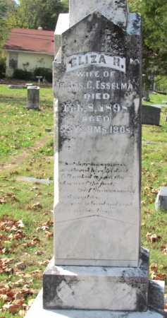 PURKINS ESSELMAN, ELIZA R - Randolph County, Arkansas | ELIZA R PURKINS ESSELMAN - Arkansas Gravestone Photos