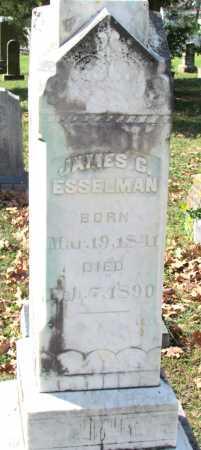 ESSELMAN, JAMES C - Randolph County, Arkansas | JAMES C ESSELMAN - Arkansas Gravestone Photos