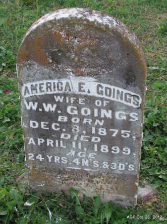 GOINGS, AMERICA E - Randolph County, Arkansas | AMERICA E GOINGS - Arkansas Gravestone Photos