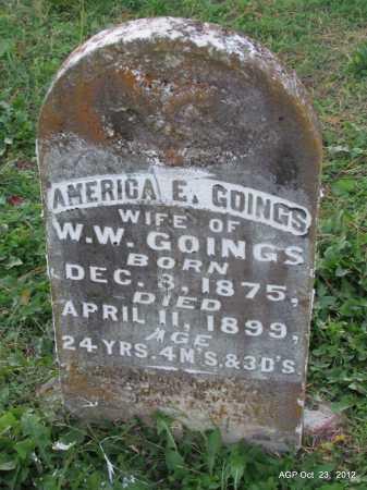JACKSON GOINGS, AMERICA E - Randolph County, Arkansas | AMERICA E JACKSON GOINGS - Arkansas Gravestone Photos