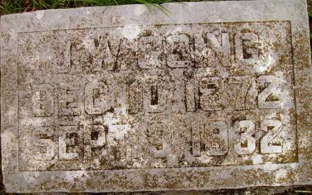 GOING, JOHN WALTER ALONZO - Randolph County, Arkansas | JOHN WALTER ALONZO GOING - Arkansas Gravestone Photos