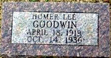 GOODWIN, HOMER LEE - Randolph County, Arkansas | HOMER LEE GOODWIN - Arkansas Gravestone Photos