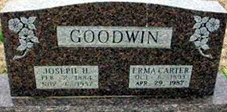 CARTER GOODWIN, ERMA CARTER - Randolph County, Arkansas | ERMA CARTER CARTER GOODWIN - Arkansas Gravestone Photos