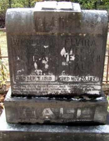 HALL, WESLEY HOUSTON - Randolph County, Arkansas | WESLEY HOUSTON HALL - Arkansas Gravestone Photos