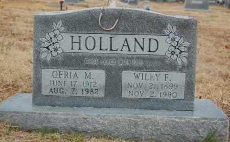 HOLLAND, WILEY F - Randolph County, Arkansas | WILEY F HOLLAND - Arkansas Gravestone Photos