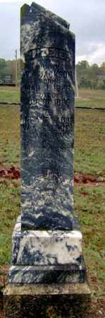 "BISHOP JACKSON, ELIZABETH ""LIZZIE"" - Randolph County, Arkansas 