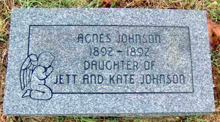 JOHNSON, AGNES - Randolph County, Arkansas   AGNES JOHNSON - Arkansas Gravestone Photos