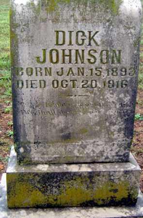 JOHNSON, DICK - Randolph County, Arkansas | DICK JOHNSON - Arkansas Gravestone Photos
