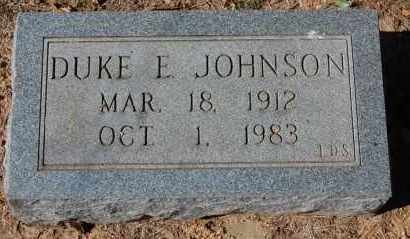 JOHNSON, DUKE E. - Randolph County, Arkansas | DUKE E. JOHNSON - Arkansas Gravestone Photos