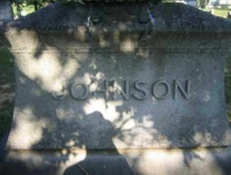 JOHNSON, FAMILY STONE - Randolph County, Arkansas | FAMILY STONE JOHNSON - Arkansas Gravestone Photos