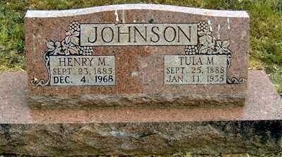 JACKSON JOHNSON, TULA M - Randolph County, Arkansas   TULA M JACKSON JOHNSON - Arkansas Gravestone Photos