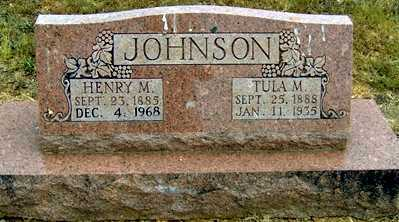 JACKSON JOHNSON, TULA M - Randolph County, Arkansas | TULA M JACKSON JOHNSON - Arkansas Gravestone Photos