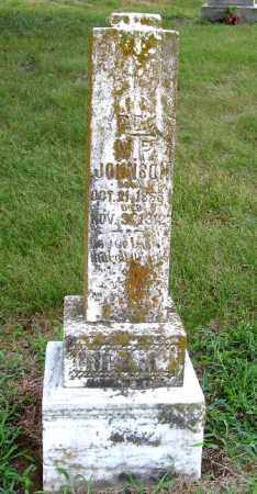 JOHNSON, M   P - Randolph County, Arkansas | M   P JOHNSON - Arkansas Gravestone Photos