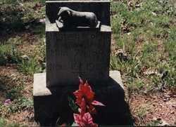 PENN, JASPER  B - Randolph County, Arkansas   JASPER  B PENN - Arkansas Gravestone Photos