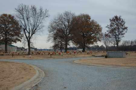 *RANDOLPH MEMORIAL GARDENS, OVERVIEW (2) - Randolph County, Arkansas | OVERVIEW (2) *RANDOLPH MEMORIAL GARDENS - Arkansas Gravestone Photos