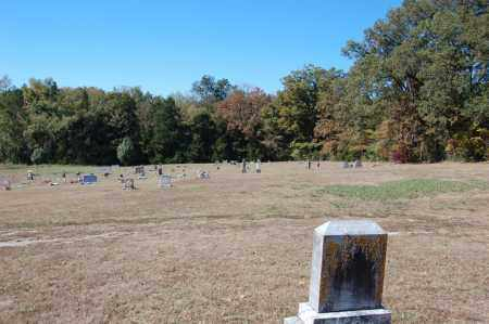 *SPIKES CEMETERY OVERVIEW,  - Randolph County, Arkansas    *SPIKES CEMETERY OVERVIEW - Arkansas Gravestone Photos