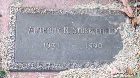STUBBLEFIELD, ANTHONY N - Randolph County, Arkansas | ANTHONY N STUBBLEFIELD - Arkansas Gravestone Photos