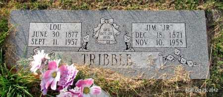 "TRIBBLE, JIM ""JR"" - Randolph County, Arkansas | JIM ""JR"" TRIBBLE - Arkansas Gravestone Photos"