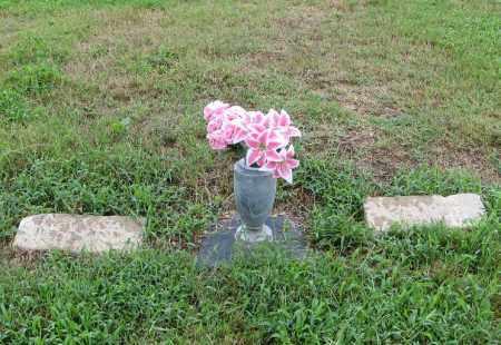 WILLIAMS, MARGARET M. - Randolph County, Arkansas | MARGARET M. WILLIAMS - Arkansas Gravestone Photos