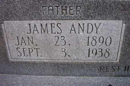 COLLINS, JAMES ANDREW - Randolph County, Arkansas | JAMES ANDREW COLLINS - Arkansas Gravestone Photos