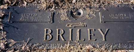 BRILEY, LLOYD - Saline County, Arkansas   LLOYD BRILEY - Arkansas Gravestone Photos