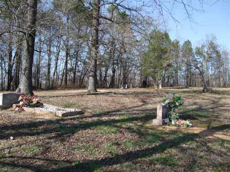 *OVERVIEW, , - Saline County, Arkansas | , *OVERVIEW - Arkansas Gravestone Photos