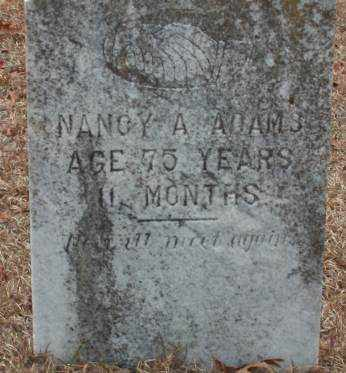 ADAMS, NANCY A - Saline County, Arkansas | NANCY A ADAMS - Arkansas Gravestone Photos