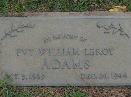 ADAMS, WILLIAM - Saline County, Arkansas | WILLIAM ADAMS - Arkansas Gravestone Photos
