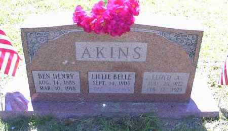"AKINS, LILLIAN AREBELLA ""LILLIE BELLE"" - Saline County, Arkansas 
